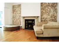 Spectacular two double bedroom garden flat in Alexandra Palace