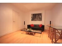 DELIGHTFUL 2/3 DOUBLE BEDROOM GARDEN FLAT MOMENT FROM CAMDEN UNDERGROUND STATION