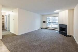 *ONE MONTH FREE *   Spacious 1 BR Apartment, AMAZING location Regina Regina Area image 10