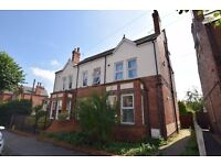 Lime Tree Avenue - Room Available Single or Double.
