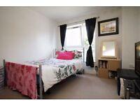 Amazing Single Room