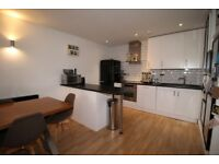 **PART DSS ACCEPTED** BEAUTIFUL 1 BEDROOM FLAT IN A QUITE PRIVATE AREA