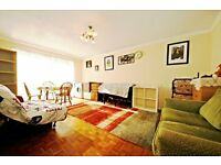 Extremely spacious 1 bedroom flat with separate living room in West Norwood