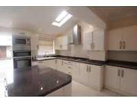 &&& SPACIOUS 3 BED HOUSE, LORDSHIP LANE &&&
