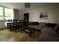 Large Single Room in a Spacious Flat - Southfields - Great Location