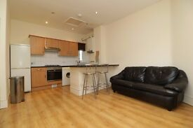 Large 3 Double Bedroom Flat with a Garden