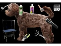 "Online Course ""Learn how to groom your dog at home"""
