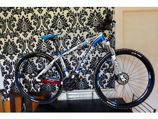 Mountain Bike (WHISTLE PATWIN 1381D)