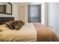 Double bedroom in 2 bed garden flat £650 bills incl/colliers wood tube