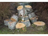 FIREWOOD - Attention all log burners! Birch wood logs for sale! Top quality!