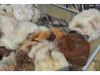 VINTAGE 9 FUR HATS FOR FURRIER JOB LOT