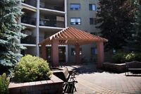 Southend Apartments - 2+ Bedroom Apartment for Rent