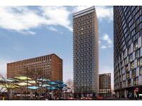 Brand New 2 bed 2 bath, 25th floor, Stratosphere Tower, E15 1DU, furn or unfurn, gym, NO AGENCY FEES