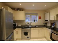 1 room in modern 4 bed property for prof sharers