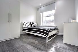 Double room overlooking Kennington Park, right by Oval tube