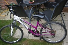 Girls Snowdon Terrain Purple and White 21 inch wheel Bicycle Falcon 18 gears