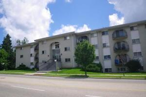520 Parkside Drive - Two Bedroom Apartment Apartment for Rent Kitchener / Waterloo Kitchener Area image 8