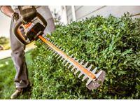 Local Hedge Trimmer and Handyman - Polite, Friendly & Trustworthy