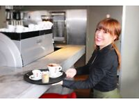 Waiter Waitress + great pay + training + vibrant team to work with