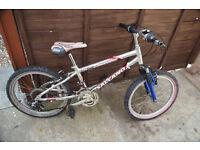 (D) Salcano Mountain bike Unisex