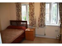 ENSUITE Double room available to rent at North Cheam