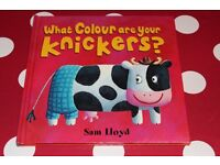 What colour are you knickers Book by Sam Lloyd