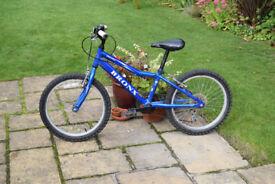 Bronx Roky 20 inch wheel boy's bike