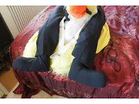 Emu Adult Fancy Dress Costume.