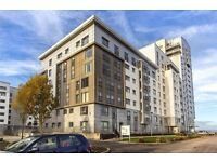 Superb spacious two bedroom furnished modern flat for rent