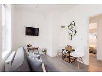 Sunny 2 bedroom apartment - Kilburn