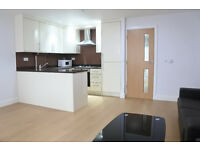 Stunning first floor 2 bedroom apartment in a smart newly built development in Alexandra Palace