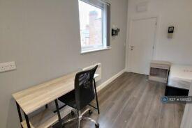 Studio flat in Tudor Road, Leicester, LE3 (#1081223)