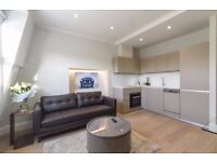 ***NEW LUXURY ONE BEDROOM FLAT*** AVAILABLE NOW - NOTTING HILL - ZONE 1 - ROOF TERRACE