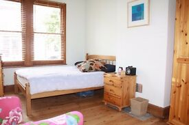 Lovely Double Room in South Norwood, SE25