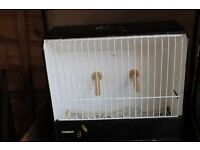 3 budgie show cages and travel box