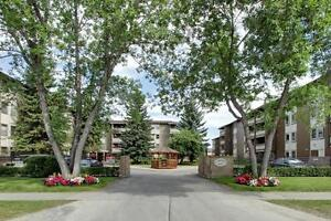 One Bedroom For Rent at Lakeview Mews - 2528 66th Avenue SW