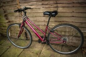 Apollo CX10 ladies hybrid bike with extra-comfy saddle