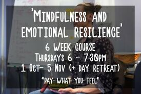 6 Week Course: 'Mindfulness and Emotional Resilience.'