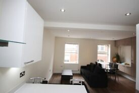 A stunning 2 bed flat close to Shoreditch/ Liverpool Street Stations
