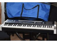 CASIO 1000P KEYBOARD 61 KEYS/CARRY CASE/STAND/CAN BE SEEN WORKING