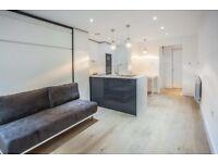 Studio flat in Cecilia Road, Hackney, E8