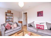 Gorgeous 3 bedroom garden flat in Clapham available immediately