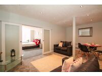 double room in new spacious 2 bed flat - Victoria Mill