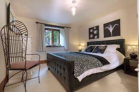 Luxury Double Room in Homerton Very Good Price !!
