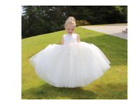 Eden glitter flower girl dress