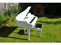 Top quality, custom made baby grand shell available