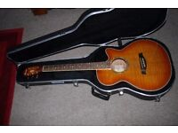 Ibanez Semi Acoustic Guitar and case