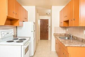 Frisco Apartments Now Renting 1 Bedroom Units Edmonton Edmonton Area image 2