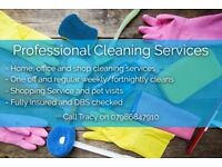 Cleaning Service Honiton area.