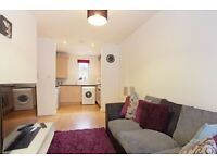 Modern two bedroom ground floor flat, close to Burgess Park